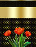 Mothers day, abstract background, tulip, greeting card. Mothers day, abstract background, tulip. Red tulips on a black background in a gold polka dots. For the stock illustration