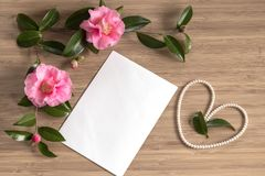 Mothers Day background with camellia flowers. And a blank card royalty free stock photo