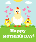 Mothers day background with chickens Royalty Free Stock Photo
