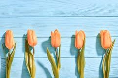 Mothers Day background.Tulips orange on blue wood Royalty Free Stock Photo