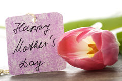 Mothers day card. Pink flowers on white with mothers day card Royalty Free Stock Photos