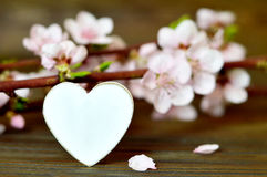 Mothers Day card with decorative heart and spring flowers Royalty Free Stock Photos