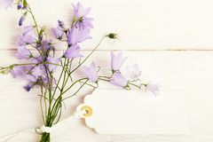 Free Mothers Day Card With With A Bouquet Of Delicate Wildflowers Campanula On White Wooden Board Royalty Free Stock Photography - 140661897