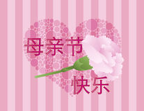 Mothers Day Chinese Pink Carnation Flower Illustra Royalty Free Stock Image