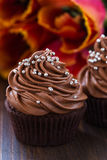Mothers day  chocolate cupcakes  with spring tulips Royalty Free Stock Images