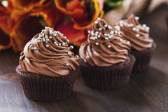 Mothers day  chocolate cupcakes  with spring tulips Royalty Free Stock Photography