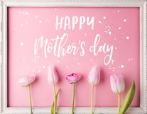 Mothers day composition.Text and flowers. Studio shot. Royalty Free Stock Images