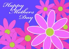 Mothers Day Daisies Stock Photography