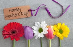 Mothers day flowers royalty free stock photo