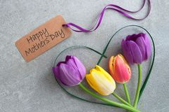 Mothers day flowers. Mothers day greeting with spring tulips inside a heart shape grass stem stock image