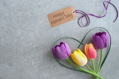 Mothers day flowers. Mothers day greeting with spring tulips inside a heart shape grass stem royalty free stock photo