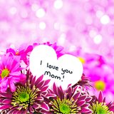 Mothers Day flowers and pink light background Stock Photography