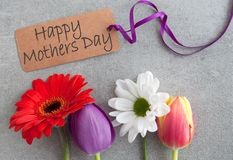 Mothers day flowers. Spring flowers with happy mothers day greeting stock photo