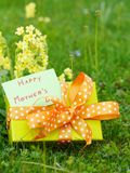 Mothers day gift box Royalty Free Stock Image