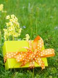 Mothers day gift box Stock Photos