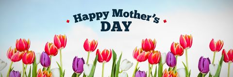 Composite image of mothers day greeting. Mothers day greeting against flowers on sky background Stock Images