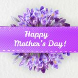 Mothers day greeting card with crocus flowers. Mothers woman day greeting card poster banner template  with purple violet saffron crocus flower frame and copy Stock Photography