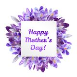 Mothers day greeting card with crocus flowers. Mothers woman day greeting card poster banner template  with purple violet saffron crocus flower frame and copy Stock Photo
