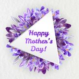 Mothers day greeting card with crocus flowers. Mothers woman day greeting card poster banner template  with purple violet saffron crocus flower frame and copy Royalty Free Stock Image
