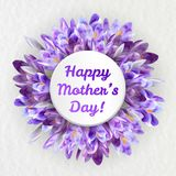 Mothers day greeting card with crocus flowers. Mothers woman day greeting card poster banner template  with purple violet saffron crocus flower frame and copy Royalty Free Stock Images