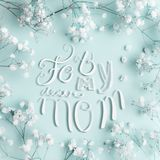 Mothers day greeting card with For my dear mom lettering and lovely little white Gypsophila flowers on turquoise background. Square Royalty Free Stock Photography