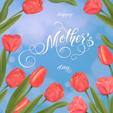 Mothers Day greeting card. Tulips background, spring holidays Royalty Free Stock Photos