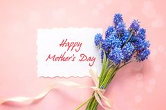 Mothers Day greeting message with bouquet of blue muscari flower. S on pink background. Top view. Flat lay stock image