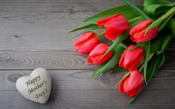 Mothers Day greeting with red tulip Royalty Free Stock Image