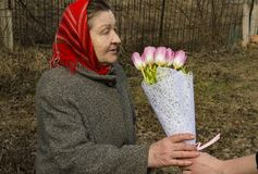 Mothers Day - an elderly woman with a bouquet of tulips in her hands royalty free stock photo