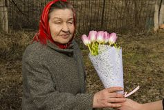 Mothers Day - an elderly woman with a bouquet of tulips in her hands royalty free stock images