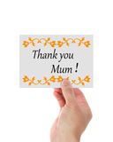 Mothers Day Thank You. Holding a card with Mothers Day Thank You Greeting isolated on white background Royalty Free Stock Photos