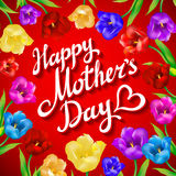 Mothers day vintage lettering background. Beautiful bouquet of colorful tulips and card on red background. Stock Images