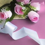 Silk ribbon, pastel roses on pink background. stock photography