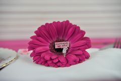 Mothers Day words on a miniature sign in a bright pink fresh flower stock image