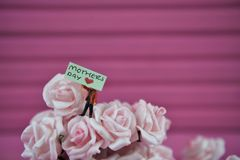 Mothers Day words on a miniature sign placed in small roses with a pink background. Cute miniature person figurine holding a sign with the text Mothers Day and a Stock Images