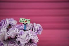 Mothers Day words on a miniature sign placed in small roses with a pink background. Cute miniature person figurine holding a sign with the text Mothers Day and a Stock Photo