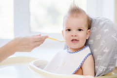 Mothers feeding the baby with cottage cheese Royalty Free Stock Photo