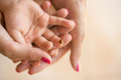 Mothers hand cupping her childs hand on which ladybug is sitting Royalty Free Stock Images