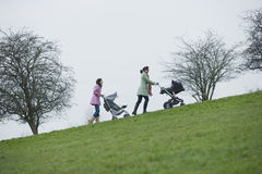 Mothers Pushing Baby Strollers Uphill In Park Stock Photos