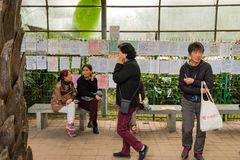 Mothers gather at a matchmaking park, Shenzhen China. Mothers, in search of a marriage partner for the child gather at a park in central Shenzhen, China to royalty free stock photography