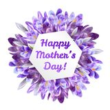Mothers day greeting card with crocus flowers. Mothers woman day greeting card poster banner template  with purple violet saffron crocus flower frame and copy Stock Images