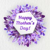 Mothers day greeting card with crocus flowers. Mothers woman day greeting card poster banner template  with purple violet saffron crocus flower frame and copy Stock Image