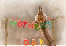 Mothersday heureux Photo stock