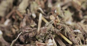 Motherwortgräs i massa arkivfilmer