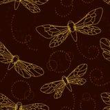 Mothes e notte-vola Fotografia Stock
