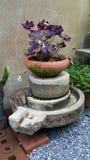 Moths flower. Decorate vintage garden natural Stock Images