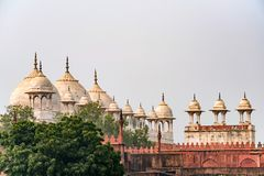 Moti Masjid or Pearl Mosque in Agra Fort, India Royalty Free Stock Photos