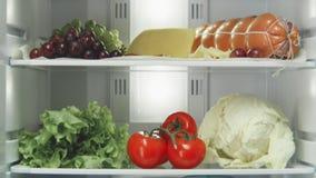 Motie omhoog langs het hoogtepunt van koelkastplanken van heerlijk voedsel stock video