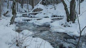 Motie van de stroomversnelling van de bergrivier in de winter stock footage