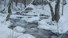Motie van de stroomversnelling van de bergrivier in de winter stock videobeelden